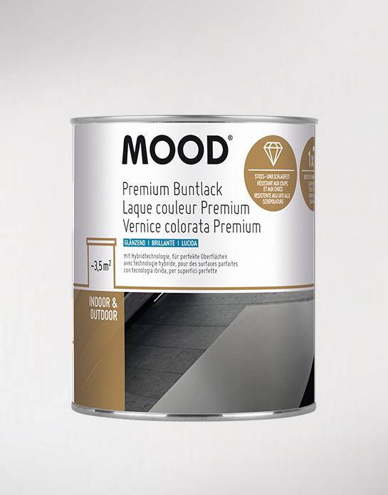 Vernice colorata Premium